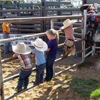 Little Cowpokes
